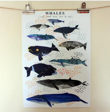 whaleprint1